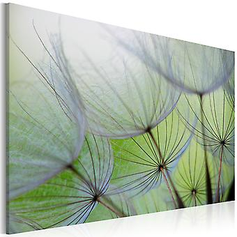 Artgeist Canvas Print Dandelion In The Wind (Decoration , Pictures and frames , Canvases)