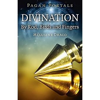 Pagan Portals  Divination By Rod Birds and Fingers by Melusine Draco