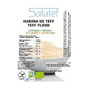 ECO teff flour 300 g of powder