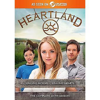 Heartland: Season Six [DVD] USA import