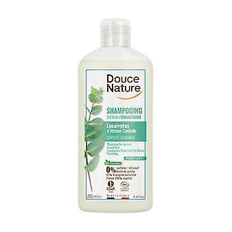 Eucalyptus Shampoo for Oily Hair 250 ml