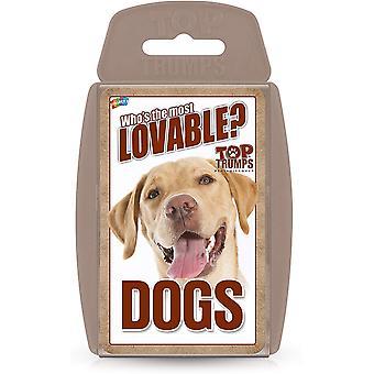 Honden Top Trumps Kaartspel