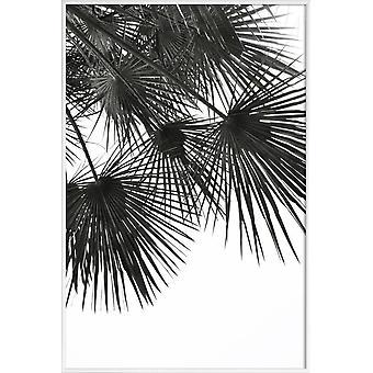 JUNIQE Print - Endeløs sommer - Vind - Palmer Plakat i grå og sort