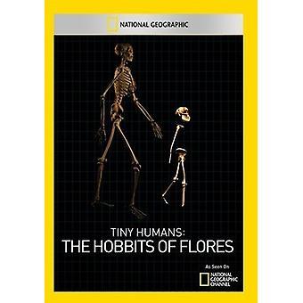 Kleine Menschen: Der Hobbits Flores [DVD] USA importieren