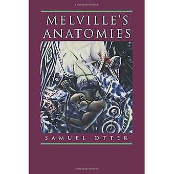 Melvillen Anatomies