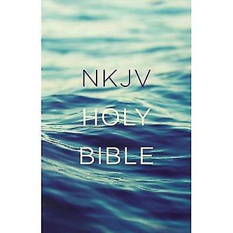 NVI, valor Outreach Bíblia, Paperback