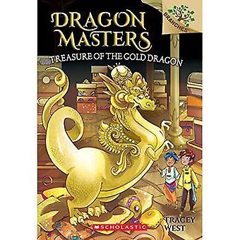 Schatz des Goldenen Drachen (Dragon Masters)