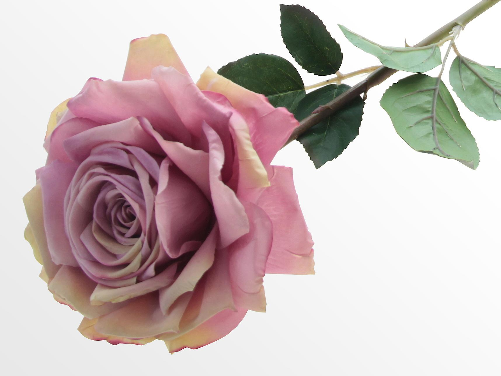 Saffronstem Artificial Pink Rose, Real Touch and Look Latex Flowers