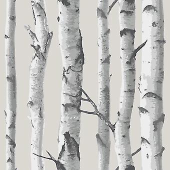 NuWallpaper Birch Tree Peel And Stick Wallpaper Grey Fine Decor NU1650 5.5m x 0.52m