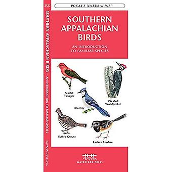 Southern Appalachian Birds: An Introduction to Familiar Species
