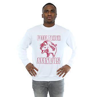 Pink Floyd Men's Animals Algie Sweatshirt