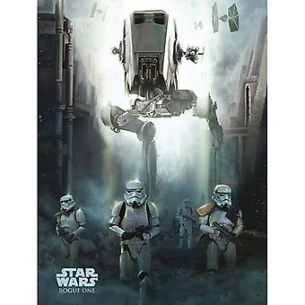 Star Wars Rogue One Stormtrooper Patrol Canvas Plate 60-80cm