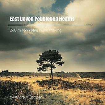 East Devon Pebblebed Heaths - 240 Million Years in the Making by Andre