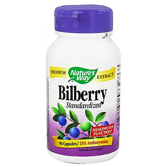 Nature's way bilberry standardized, capsules, 90 ea