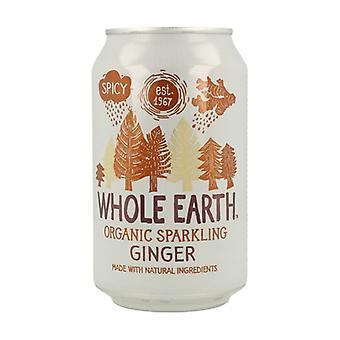 Sugar Free Ginger Soda Bio 330 ml