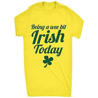 Renowned Being a Wee bit Irish Today