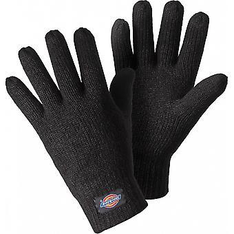 DICKIES Mens acrylique tricoté thermique isotherme Thinulate bordée de gants