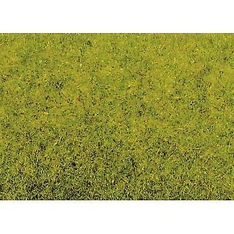 NOCH 8300 Grass flock Spring meadow Light green