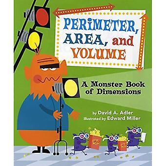 Perimetro, Area e Volume