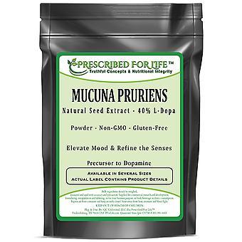 Mucuna pruriens-extrato de semente natural-40% L-dopa pó