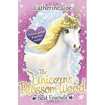 The Unicorns of Blossom Wood: Best Friends