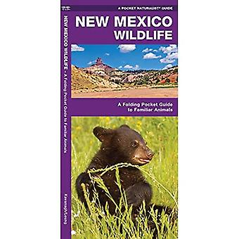 New Mexico Wildlife: An Introduction to Familiar Species (Pocket Naturalist)