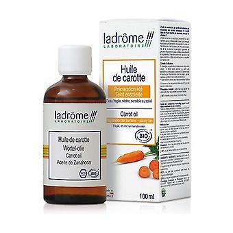 Organic Carrot Maceration Oil 100 ml of oil