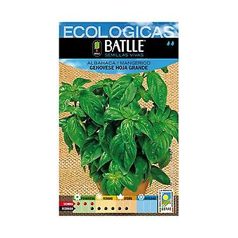 Basil Genovese Large Leaf Seeds 1 packets