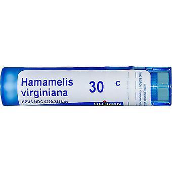 Boiron, Single Remedies, Hamamelis Virginiana, 30C, Approx 80 Pellets