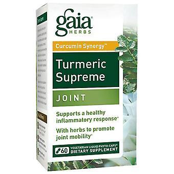 Gaia Herbs Curcuma Supreme, Joint 60 Caps