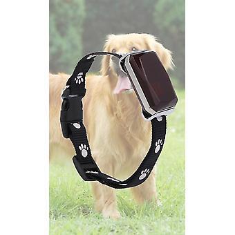 Collare impermeabile per animali domestici Gsm Agps Wifi Lbs Mini Light Tracker per animali domestici Cani Gatti