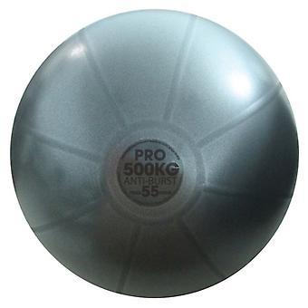 Fitness Mad Studio Pro Anti-Burst 500kg Swiss Ball - Grafit - 3 storlekar