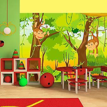 Papier peint pour enfants - jungle - singes