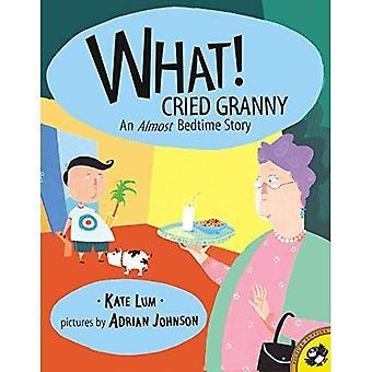 Was! Rief Oma: Ein fast Gutenachtgeschichte (Bild Papageientaucher)