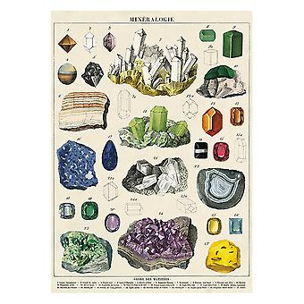 Cavallini Mineralogie Wrapping Paper Poster