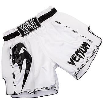 Venum Mens Giant Muay Thai shortsit-valkoinen/musta