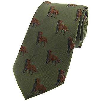 Дэвид ван Хаген шоколад лаборатории страны шелковый галстук - зеленый/коричневый