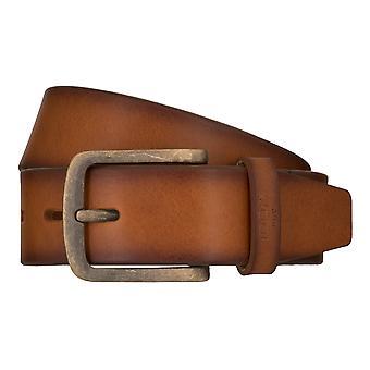 ¡JOOP! Correas cinturones hombres cuero Cognac de la correa de los pantalones vaqueros 7905