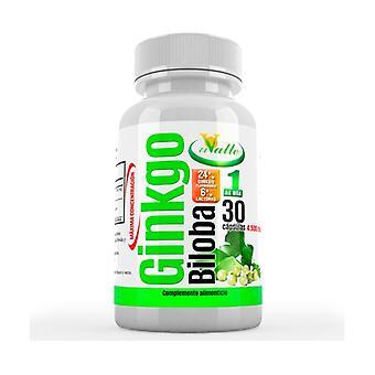 Ginkgo Biloba 30 capsules