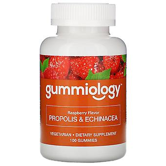 Gummiology, Adult Propolis & Echinacea Gummies, Natural Raspberry Flavor, 100 Ve