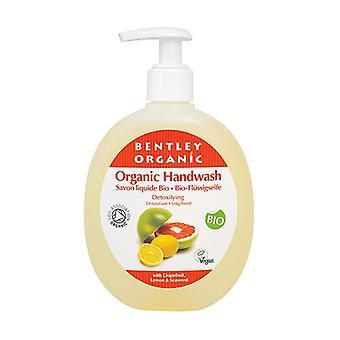 Detox Liquid Hand Soap 250 ml (Lemon - Grapefruit - Algae)