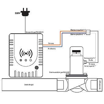 Kit Gas Sensor PNI GD-01 en PNI V-02 magneetcode 2014172