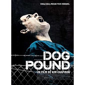 The Dog Pound Movie Poster (11 x 17)