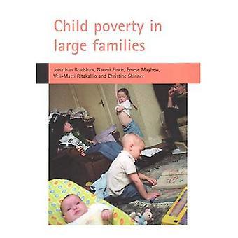 Pauvreté des enfants dans les familles nombreuses