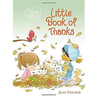 Preciosos momentos pouco livro de Graças (momentos preciosos) [livro de placa]