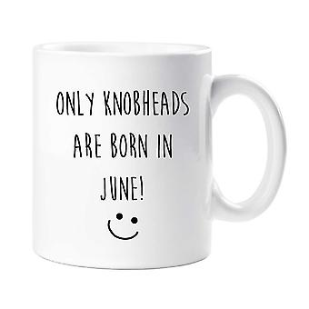 June Birthday Mug Only Knobheads Are Born In June