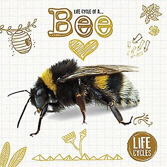 Life Cycle of a Honeybee by Kirsty Holmes - 9781786372819 Book