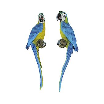 Pair of Lifelike Blue Macaw On Perch Wall Hangings Tropical Decor