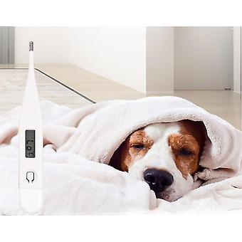 Led Digital Thermometer For Pets-humanized Design