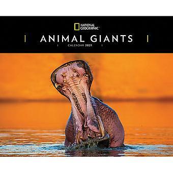 Otter House 2021 Calendar - Animal Giants
